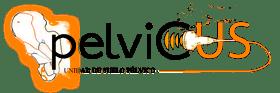 Pelvicus