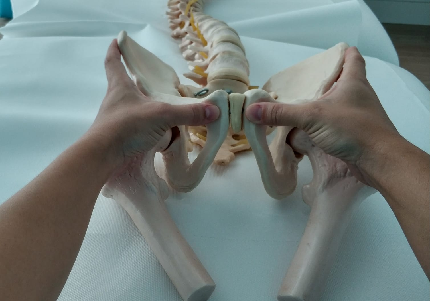 Terapia manual dolor pelvico crónico mujer