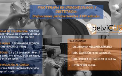 Curso Fisioterapia en Uroginecología y Obstetricia